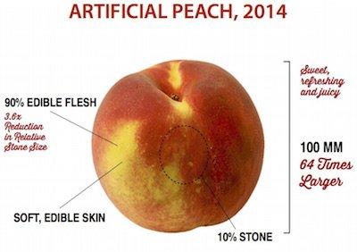 modern-peach.jpg