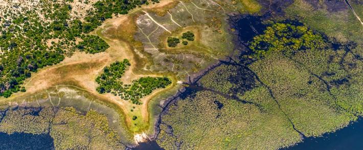 bes-home-delta-grassland-710x295.jpg